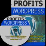 Apakah Blog Anda Digunakan Untuk Bersenang-senang Atau Untuk Membuat Uang?