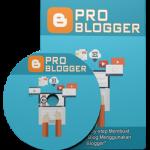 4 Kesalahan Utama yang terjadi pada blogger yang dapat menghambat penghasilan lewat internet